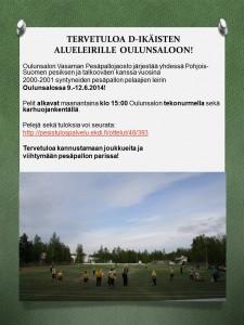 D-ikäisten Alueleiri 2014 OsVa